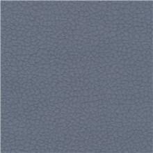 Purechic - Blue Jay